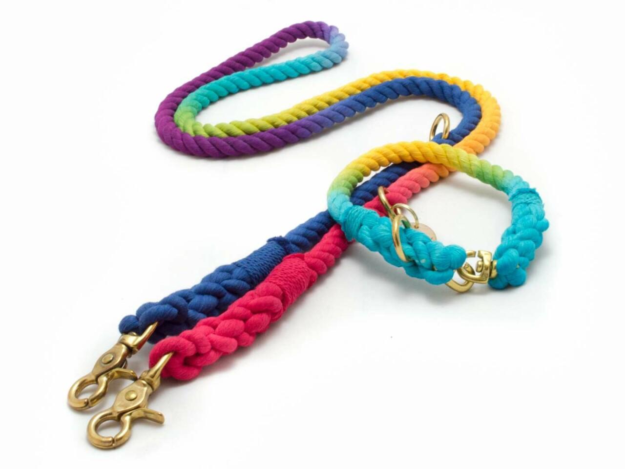 Tauleine & Tauhalsband Rainbow für Hunde - taukunst Manufaktur